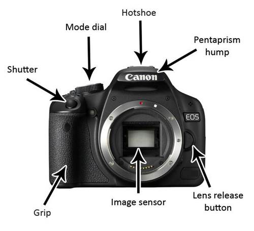 Quick Photography Tips and Tricks Understand Your Digital Camera
